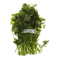 Organic Cilantro Bunched