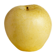 Yellow Asian Pears