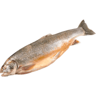 Arctic Char, Whole