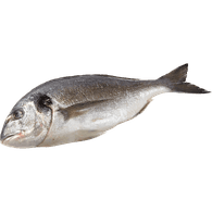 European Sea Bream, Whole