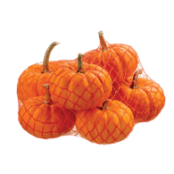 Mini Pumpkins, 6 Pack