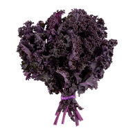 Organic Red Kale, Bunch