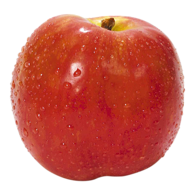 Gravenstein Apple
