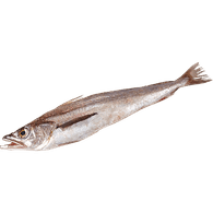 Whiting, Whole