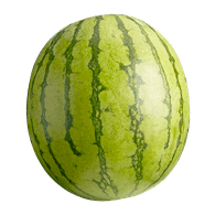 Mini Seedless Watermelon