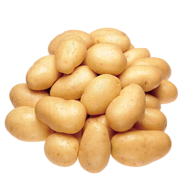 New Mini White Potatoes