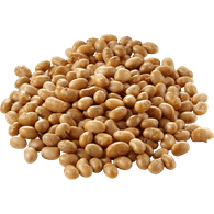 Roasted Soya Nuts, Unsalted