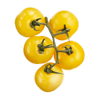 Yellow Vine Tomatoes (1bunch)