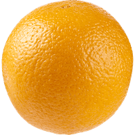 Navel Orange, Medium