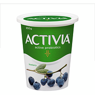 Blueberry 2.9% M.F. Probiotic Yogurt,650g