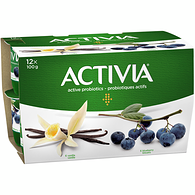 Blueberry/Vanilla 2.9% M.F. Probiotic Yogurt,12x100g
