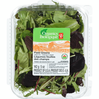 Field Greens Salad Mix