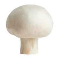White Mushrooms, Bulk Case