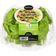 Boston Lettuce, Dome