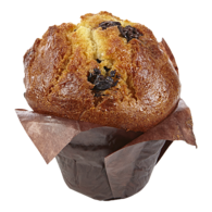 Muffin, Chocolate Chunk
