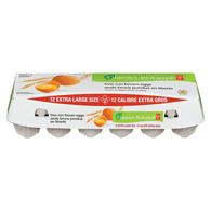 Organic Free Run Brown Eggs, Extra-Large