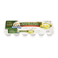 Nature's Best White Eggs, Large