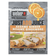 Just Add Juice Sesame Ginger Marinade Mix