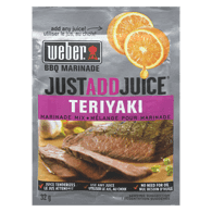 Just Add Juice Marinade Mix, Teriyaki