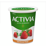 Lactose Free Strawberry 2.9% M.F. Probiotic Yogurt,650g