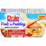 Fruit 'n Pudding Apples in Caramel Pudding