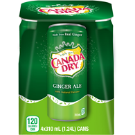 Ginger Ale (Case)