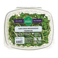 Micro Greens Organic Sunflower