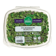 Micro Greens Organic Spicy Mix